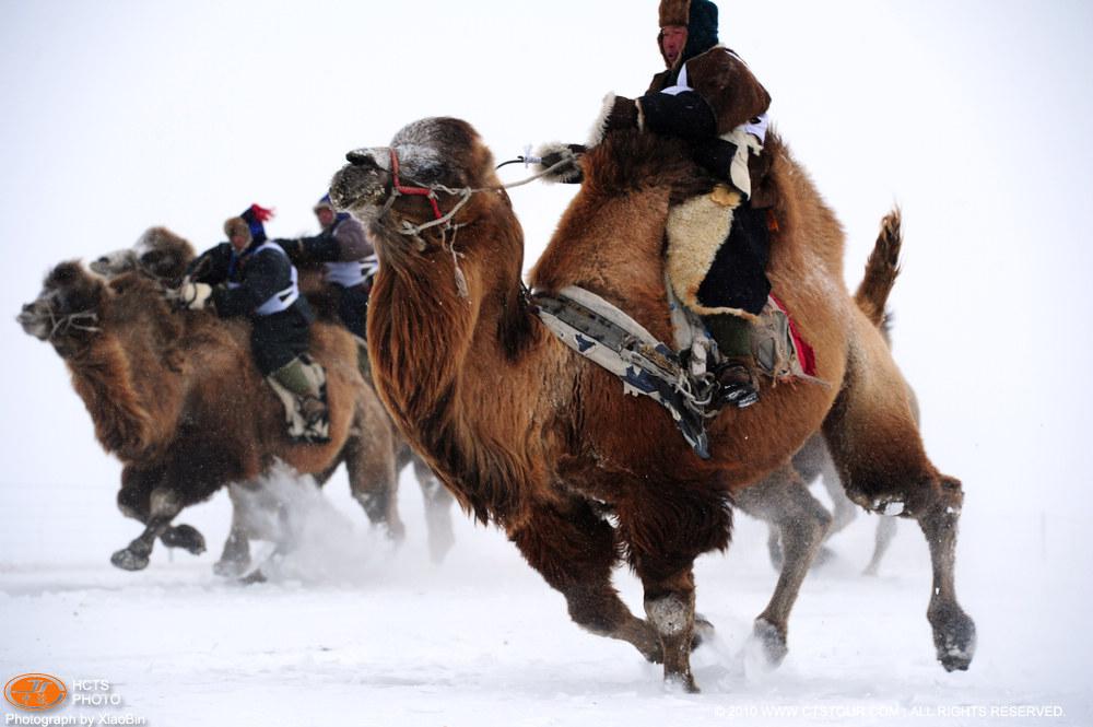 冬季那达慕大会5-呼伦贝尔摄影网-呼伦贝尔中旅旗下网站
